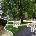 Údržba parkov